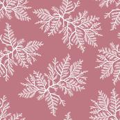 Rose Cedar