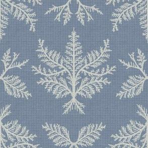 Gray Cedar on Texture