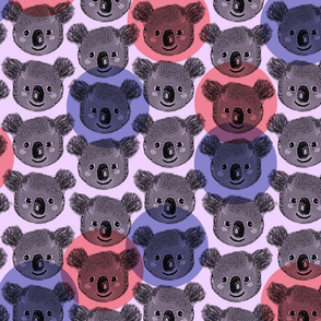 Happy Koalas large