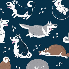 Husky Huskies