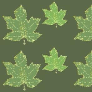 maple leaf list_kliona_on_haky