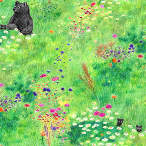 Mommy and baby bears walk though wild flower field