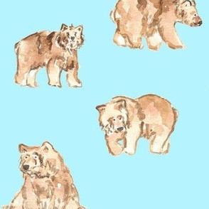 brown  bear blue