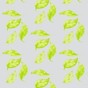 Springsong Leaves on Silver Mist