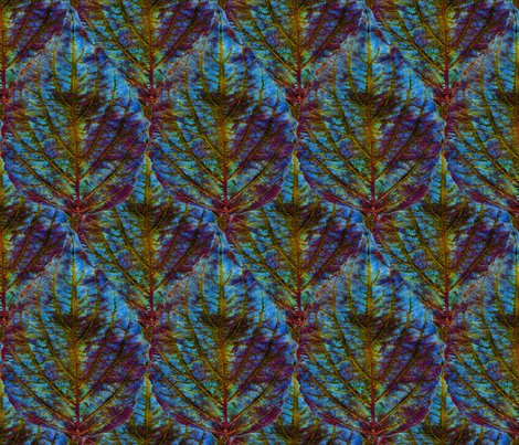 Rrrcoleus_leaf_pattern5_shop_preview
