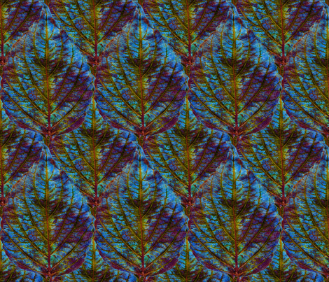 Coleus Leaf 5 fabric by enid_a on Spoonflower - custom fabric