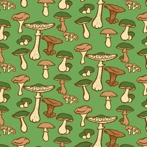 edible mushrooms // green