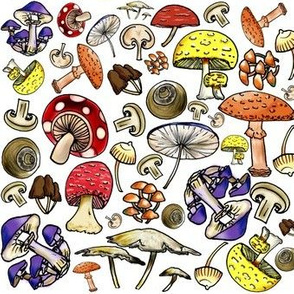 Cute Shrooms