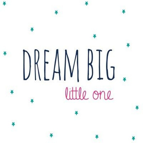Dream Big Little One  - Navy Hot Pink and Teal  Stars