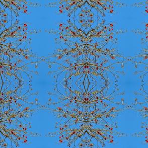 Blue Sky Confetti