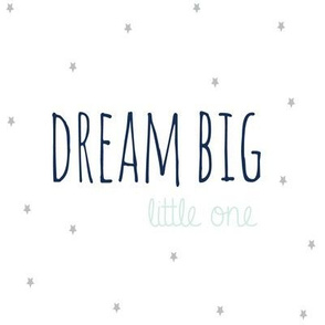 Dream Big Little One in Aqua Mist  Navy and Grey  Stars