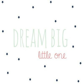 Dream Big Little One in Mint Coral and Navy Stars