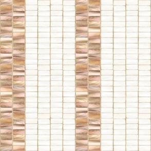 Wampum Stripe Whelk 300