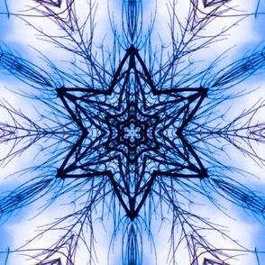 Tree Mandala 1