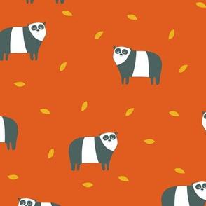 panda orange