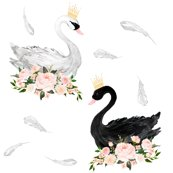 Rblack_and_white_swan_shop_thumb