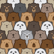 Bears Bears Bears!