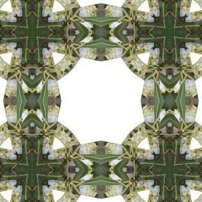 whitebells-flower-cross