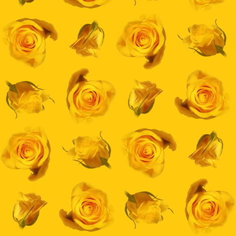 Saffron_roses fabric by gothiccolour on Spoonflower - custom fabric