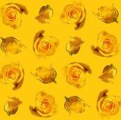 Rrsaffron_roses_shop_thumb
