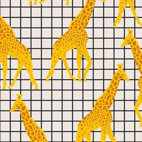 bebe_giraffe