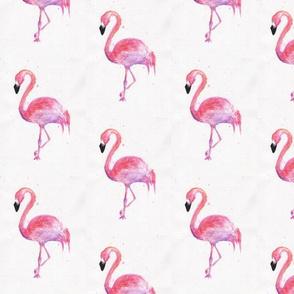 Pretty in pink-watercolor