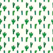 Mexican cactus field