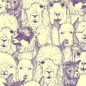just alpacas purple cream