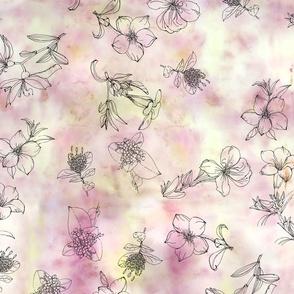 flower_dye_illustrations_final