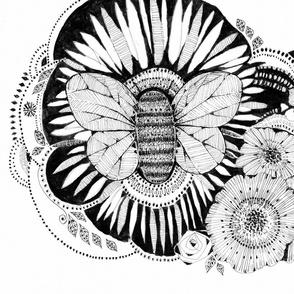 BEE_ABUNDANCE_o