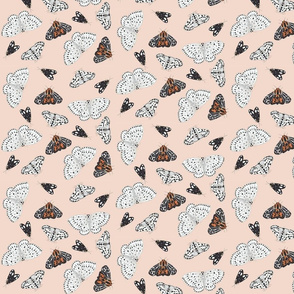 Moths in muted tones