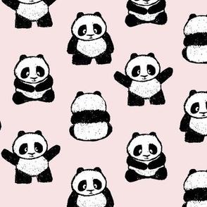 pandas on blossom || pandamonium