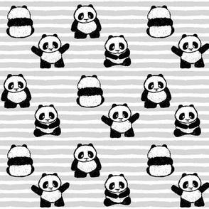little pandas on stripes    pandamonium