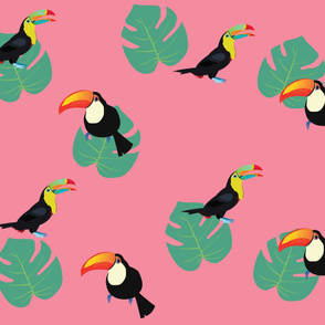 Tropical Toucan Pink