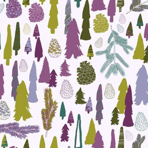 Pine Cones and Fir Trees