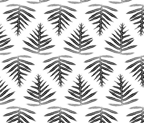 Fern Array Black on White 150 fabric by kadyson on Spoonflower - custom fabric