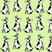 Rrrabigale_and_roo_2_pale_green_roos_shop_thumb