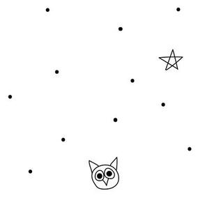 Star&owl