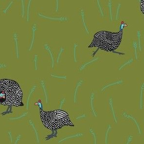confusion of guinea fowl 2