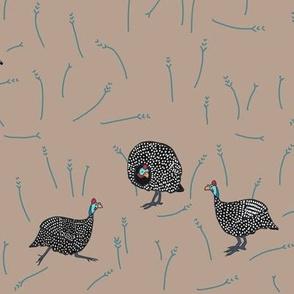 confusion of guinea fowl 3