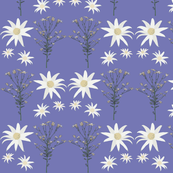 2941 Flannel_Flower#1 -Purple