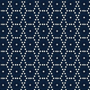 dots_hex_wired_navy