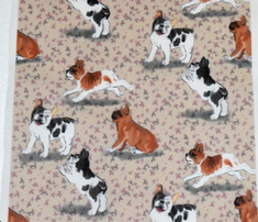 Rfrolicking_french_bulldogs_on_beige_comment_723550_thumb
