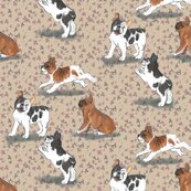Rfrolicking_french_bulldogs_on_beige_shop_thumb