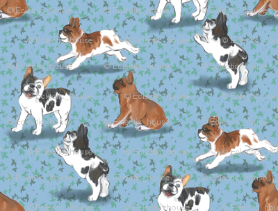 Frolicking French Bulldogs on Blue