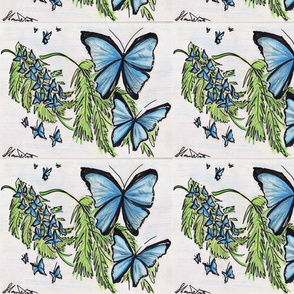 Two blueblack butterflies