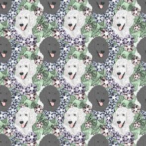 Floral Standard Poodle portraits