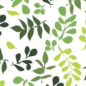 Summer Leaves rainforest