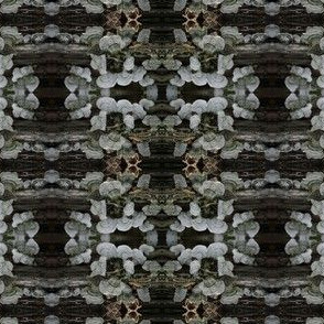 _IGP6096
