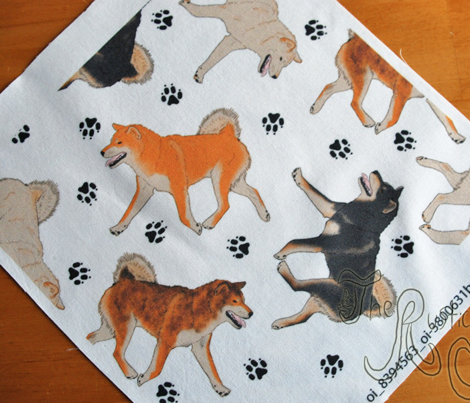 Trotting Shiba Inu and paw prints - white